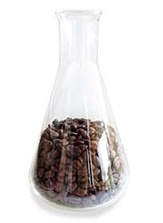 кофе исследование